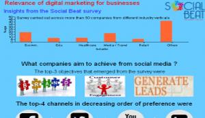 Social Beat Digital Marketing Survey Report 2013