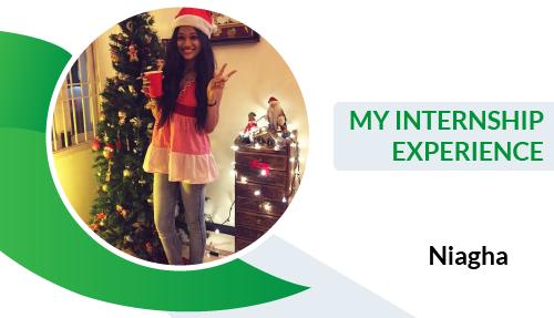 My Internship Experience – Niagha